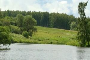 По иску прокуратуры в Курском районе отменили незаконную аренду участка рядом с прудом