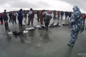 Народная рыбалка на Сахалине